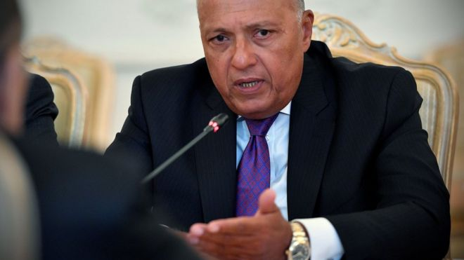 File photo of Egyptian Foreign Minister Sameh Shoukry (21 August 2017)