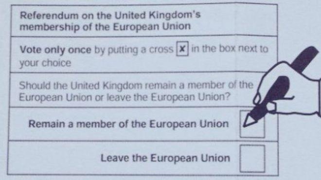 EU referendum: Row over 'biased' postal vote form - BBC News