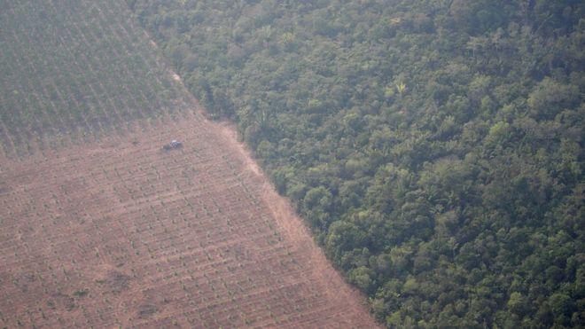 Imagem aérea mostra trator em uma plantação ao lado de floresta perto de Porto Velho (RO)