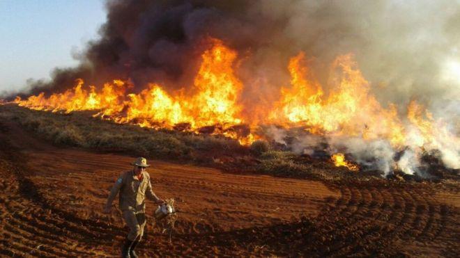 Bombeiro diante de queimada no Mato Grosso do Sul em 23 ago 2019