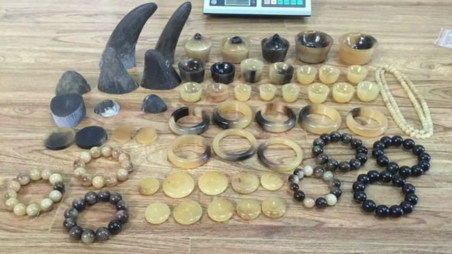 Raw and carved rhino horn is sold primarily in Vietnam and China