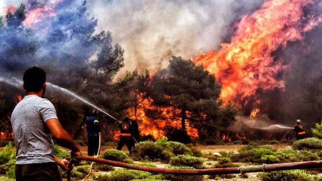 greece wildfires emergency chiefs replaced bbc news