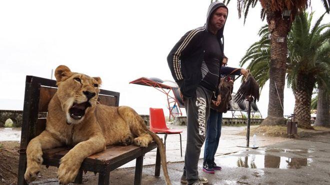 Um homem com seu leão 'de estimação' na região do Mar Negro na Abecásia, região que já foi parte da Geórgia