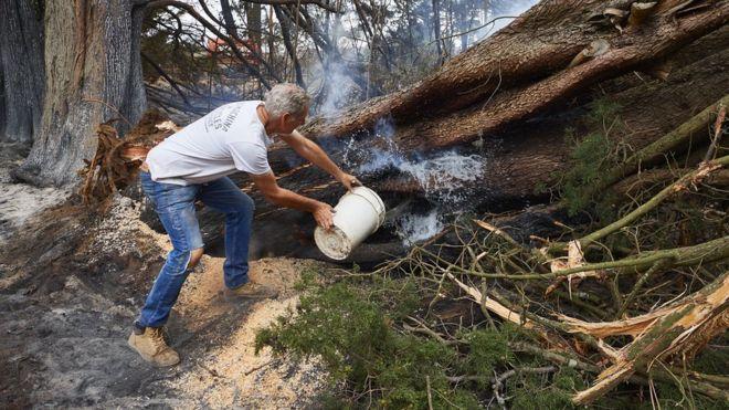 Австралийцы объединились против пожаров. И против премьер-министра