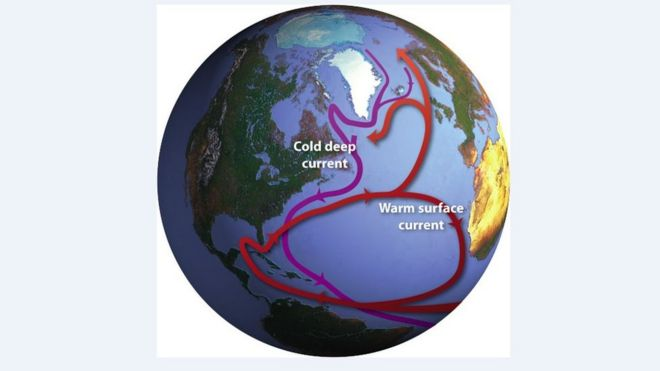 "The Ocean Conveyor. A global system of currents, often called the ""ocean conveyor"", carries warm surface waters from the tropics northward (c) Jack Cook, Woods Hole Oceanographic Institution"