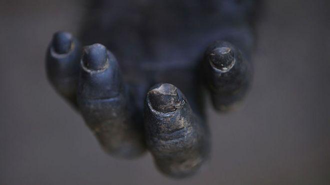 Mão de um chimpanzé