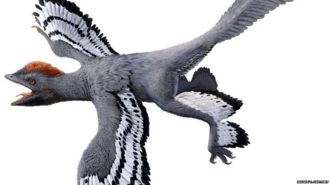 best ever view of what a dinosaur really looked like bbc news