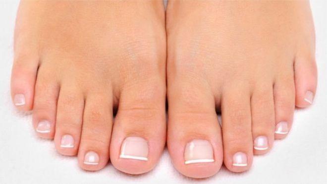 Por qué el dedo gordo del pie fue el último en evolucionar cuando ...