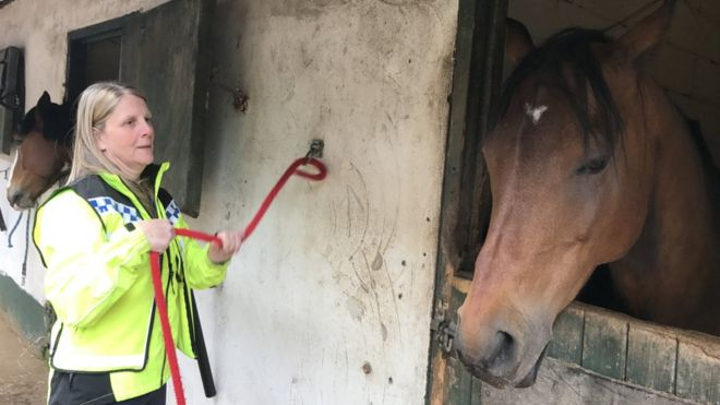Jocelle Lovell at the stables