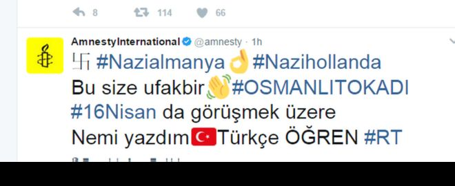 Turkey backers' target Amnesty, BBC and other major Twitter accounts