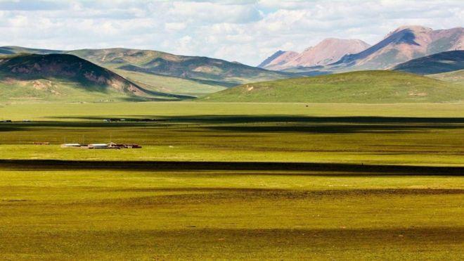 Thảo nguyên Tây Tạng
