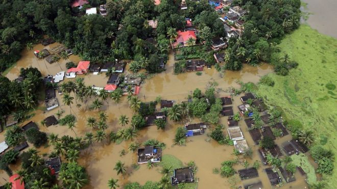 kerala flood aftermath battling snakes and sewage to clean a city