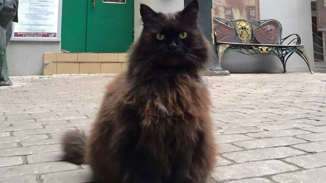 Cat Stolen From Museum (But Found Later)