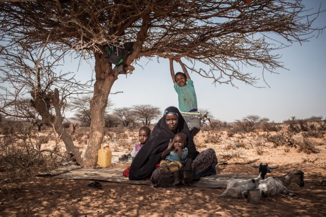 Mother Deeqa and her children find shade from the midday sun under a tree near their home in a rural area outside of Kiridh, Somaliland.