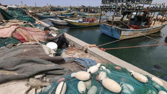 مراكب صيد في غزة