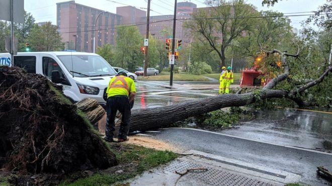 Storm Dorian: Widespread power cuts as winds batter Nova Scotia