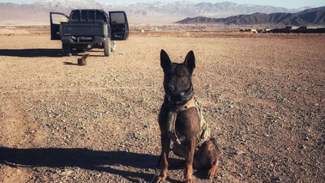 Kuno has completed two deployments to Afghanistan