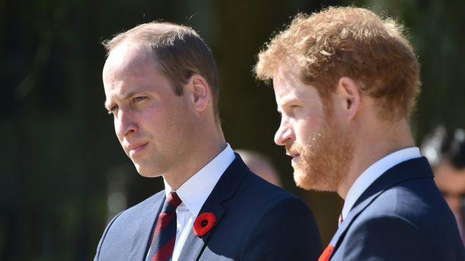 William and Harry at the Canadian National Vimy Memorial in April