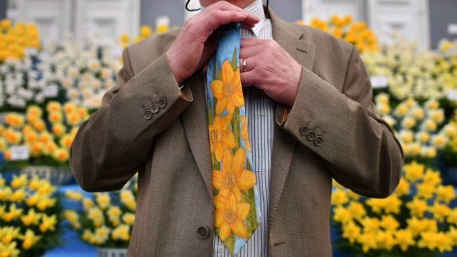 A man wearing a floral tie poses in front of daffodils