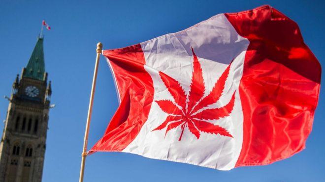 Chương trình nhập cư Canada mang tới cho bạn điều gì?