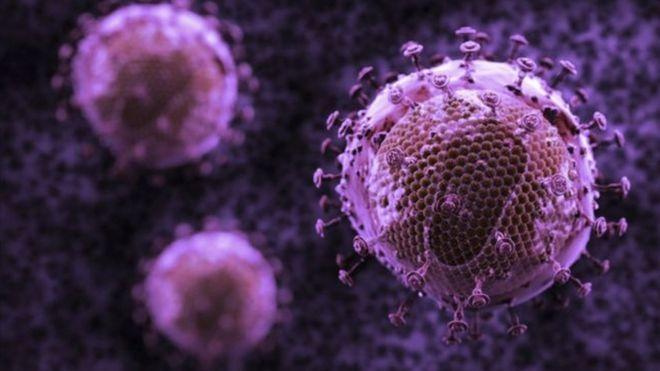 Штаммы ВИЧ