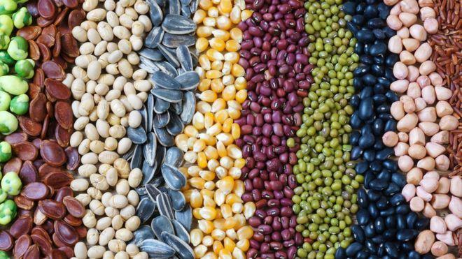 Descubre 3 tipos de alimentos que ayudan a controlar el apetito