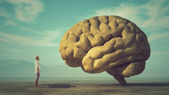 Hombre mirando un cerebro en paisaje