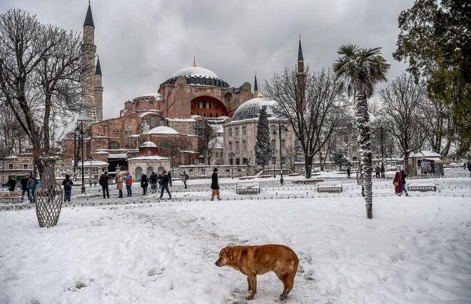 Listedeki 470 yer arasında Türkiye'den sadece Ayasofya Müzesi bulunuyor. Ayasofya, 43'üncü sırada
