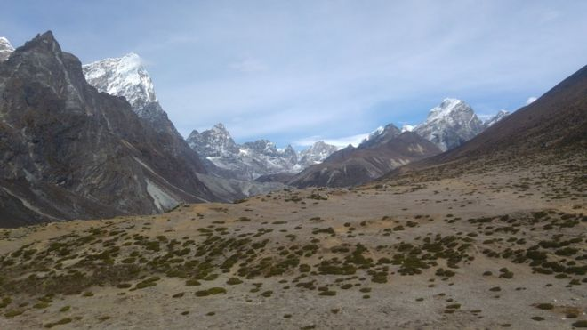 El pasto y los arbustos se están haciendo comunes en el valle del Khumbu.