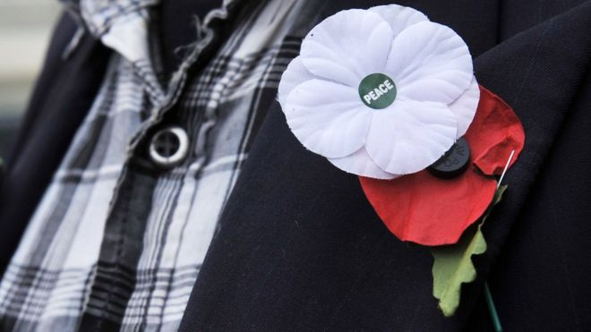 998d6f3fb1 White poppy: How is it different from the red remembrance symbol ...