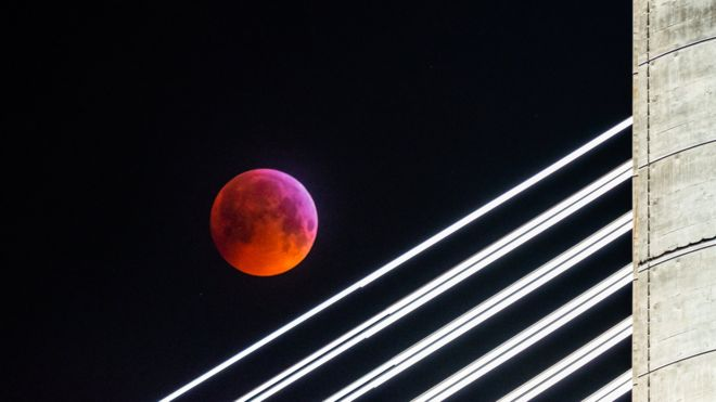 「Super Blood Wolf Moon photo」の画像検索結果