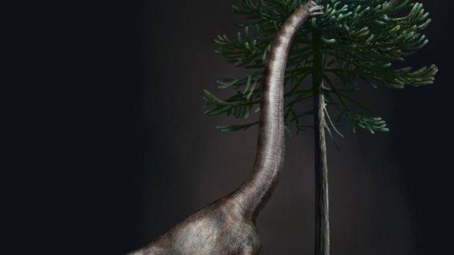 Ilustração de um braquiossauro