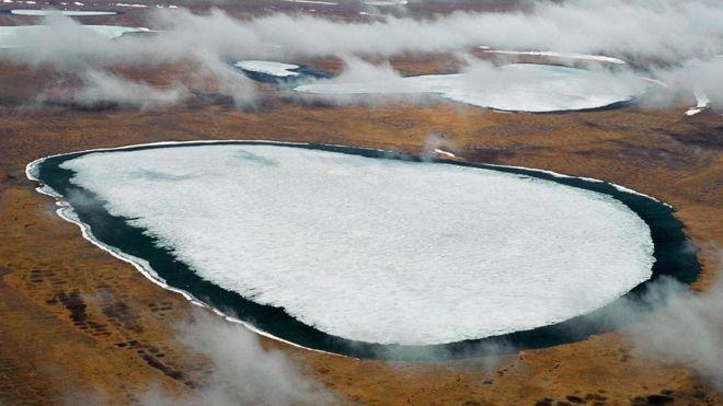 buzullarda saklı mikroplar
