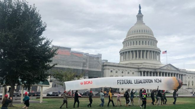 Ativistas pedem legalização nacional da maconha nos EUA
