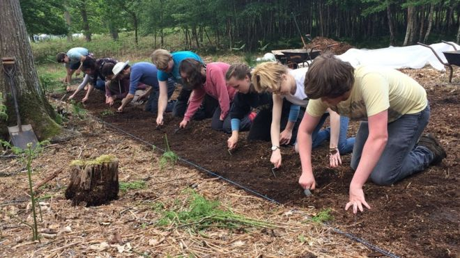 Archaeologists In Denny Inclosure