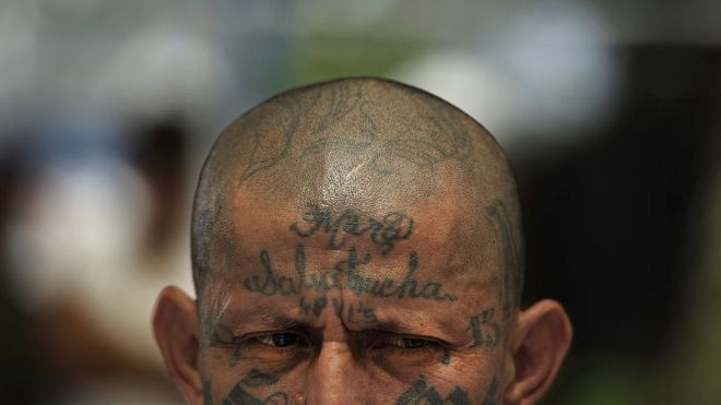 ms13 gang the story behind one of the worldu0027s most brutal street gangs bbc news