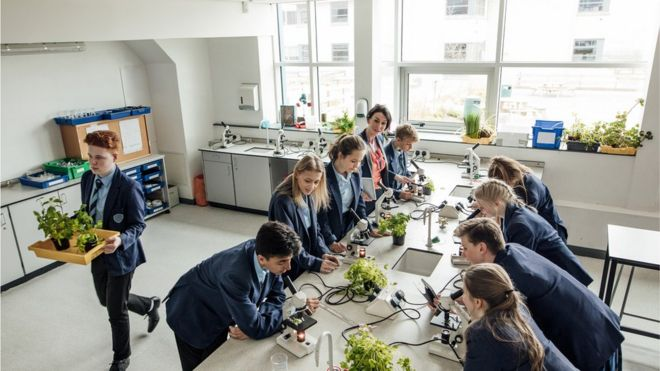 Children in science class looking down microscopes