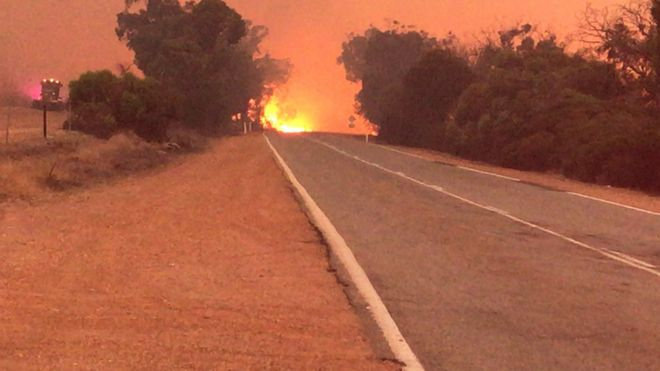 A picture of the bushfire spreading through the town of Mogumber, north of Perth