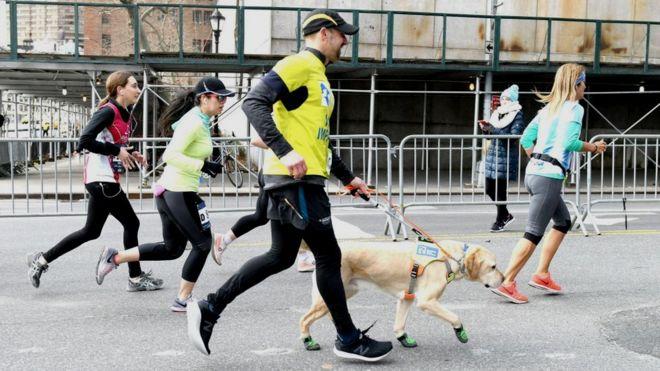 118f3c0f1fb47 Thomas Panek running the New York City Half Marathon with his guide dog Gus