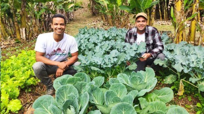 Agricultores em horta