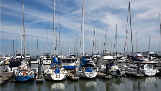 Sailboats and other leisure craft docked at a marina in San Francisco, California