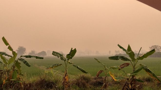 ฝุ่นละอองขนาดเล็ก PM 2.5