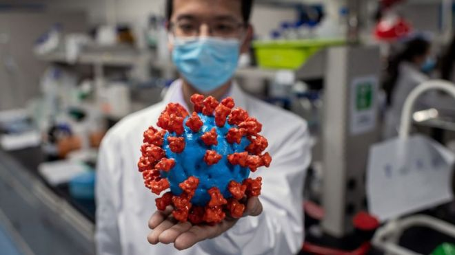 Scientist holding a model of the virus