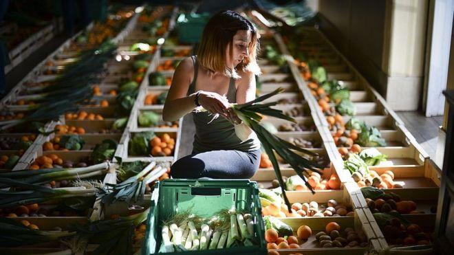 Chica preparando cajas de fruta.