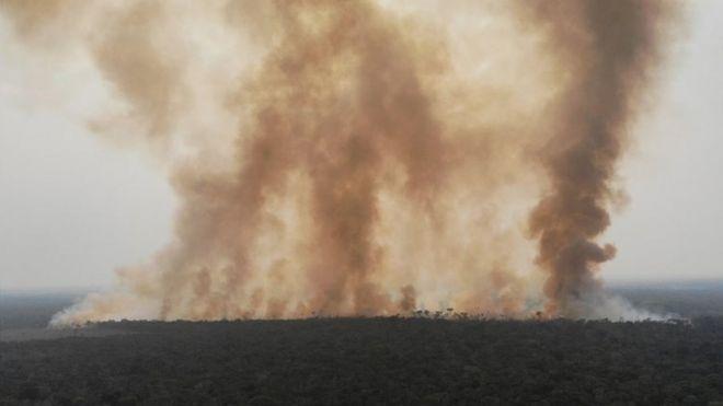 Trecho da Amazônia pegando fogo no Amazonas