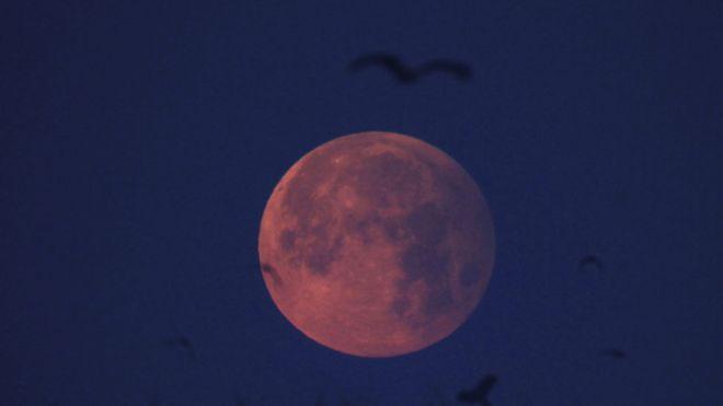 Luna llena y rosada vista desde Lahore, Pakistán