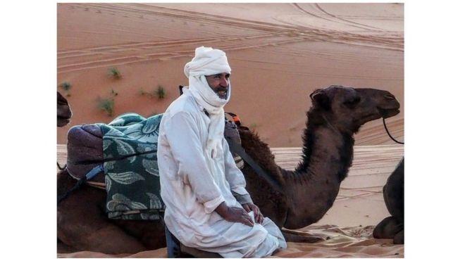 Saharada berber və dəvəsi