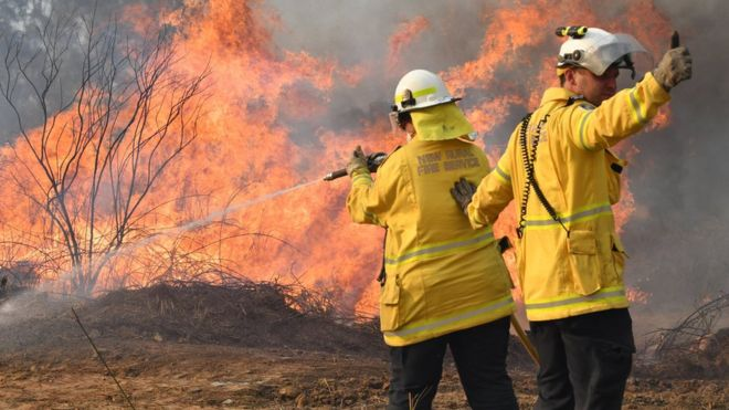Firefighters battle a blaze near the town of Drake in New South Wales