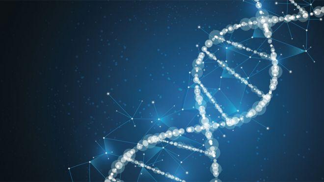 A DNA chain