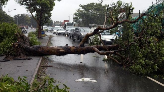 Traffic jams caused by fallen trees during a storm in Durban, South Africa October 10, 2017